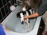 21: taking a bath