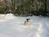 40: snow fun