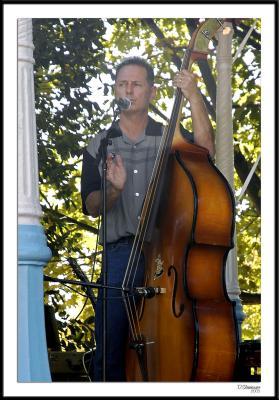 ds20051002_0251awF Bass Fiddle.jpg