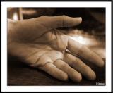 Hands, hands, hands, hands...