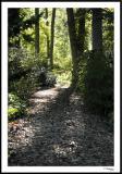 ds20050930_0235awF Path.jpg