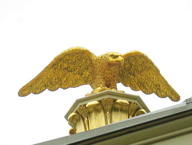 Eagle by Benjamin Rush (reproduction)<br>9021