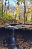 blue hen falls in fall