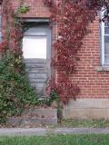 gray door with red vines