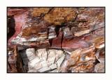 Lesbos - Petrified Forest - DSCN5573.jpg