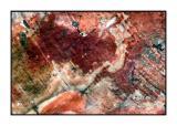 Petrified Forest - DSCN5612.jpg