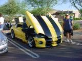 Viper and viper owner