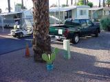 new green truck morning