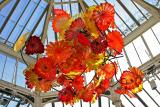 Chihuly Glass at Kew Gardens