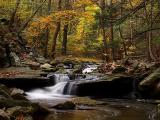 wCatoctin Creek5.jpg