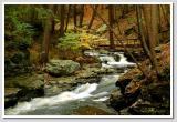 Autumn Stream  I
