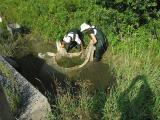 Jock River fish survey - Aug. 30, 2005