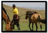 Gathering the Horses, Tov Aimag