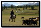 Kazakh Horserider by the Lake, Bayan-Olgii