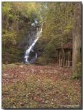 Reedy Branch Falls.jpg