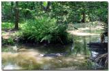 2005-06-28--5059.jpg