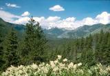 Hwy 21 Overlook near Sawtooth Mts