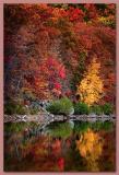 11.02.05  Autumn Glory