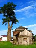 Big Tree Small Church