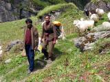 Pindari Shepherds.jpg