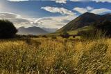 Mount Cotton - Lake Coleridge