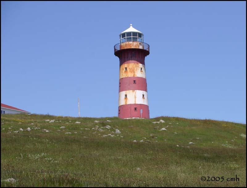 IMG_6998 Cape Pine Lighthouse.jpg