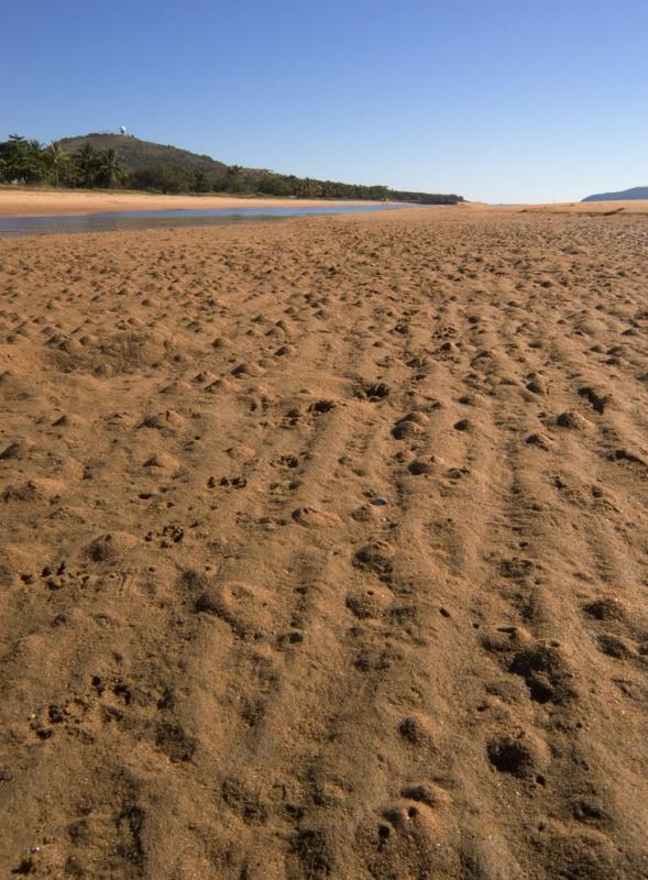 Pallarenda beach, low tide CRW_0324
