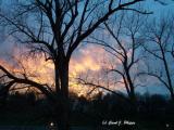 Kentucky Blue Sunset.JPG