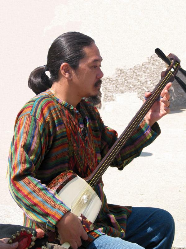 Castle Musician