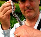 Peter and the Milksnake