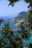 Big Sur coast - Julia Pfeiffer Burns SP