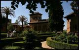 Gardens in the Alhambra,Granada