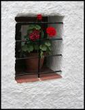 window in Mojacar