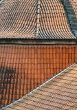 Complex tile roof
