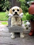 DogGoAway.jpg