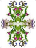 June 21, 2005Scanner Kaleidoscope