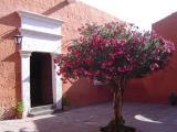 Arequipa (May 05)
