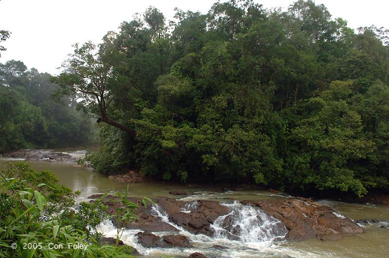 Jasin rapids upstream