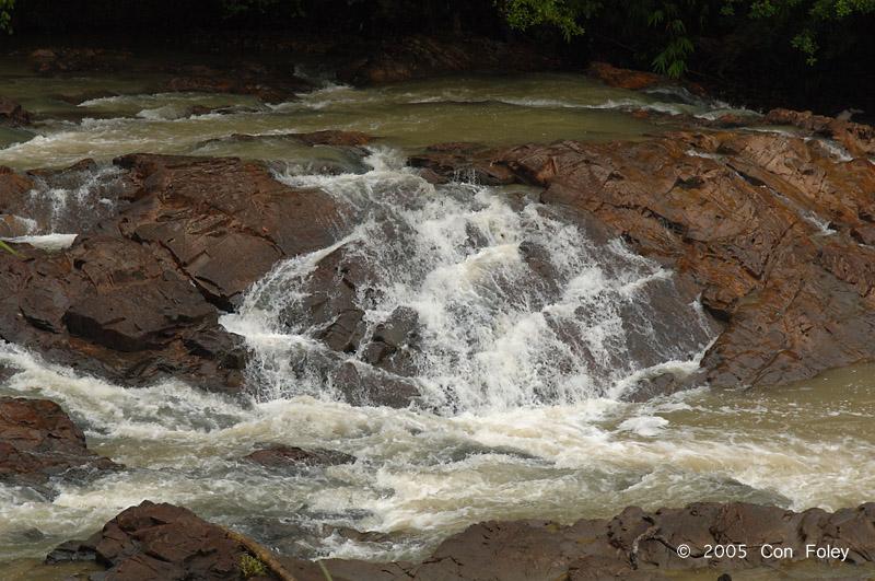 Kuala Jasin rapids