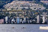 Kayaks in Burrard Inlet