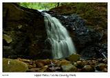 The Upper Falls of Uvas County Park