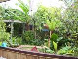 View across from left.jpg 2005