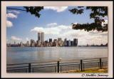 From Ellis Island