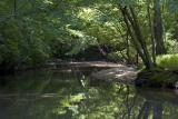 Popes Head Creek II