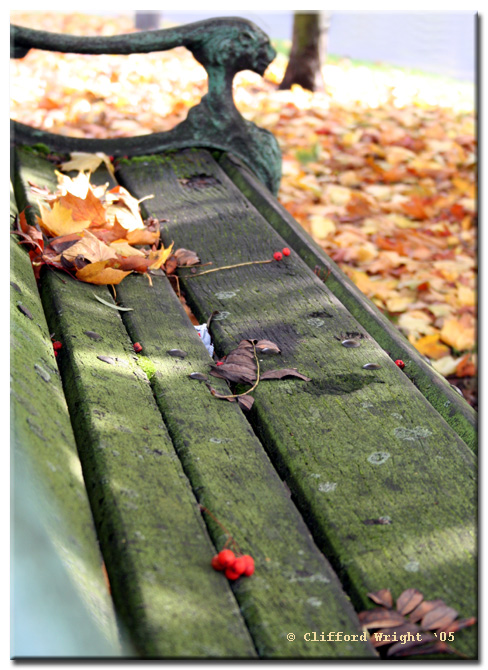 22_10_05 Autumn Waits for No Man