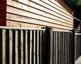 Back yard fence and shed