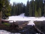 A snowy meadow