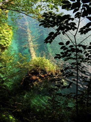 Transition, Plitvice Lakes National Park, Croatia, 2005