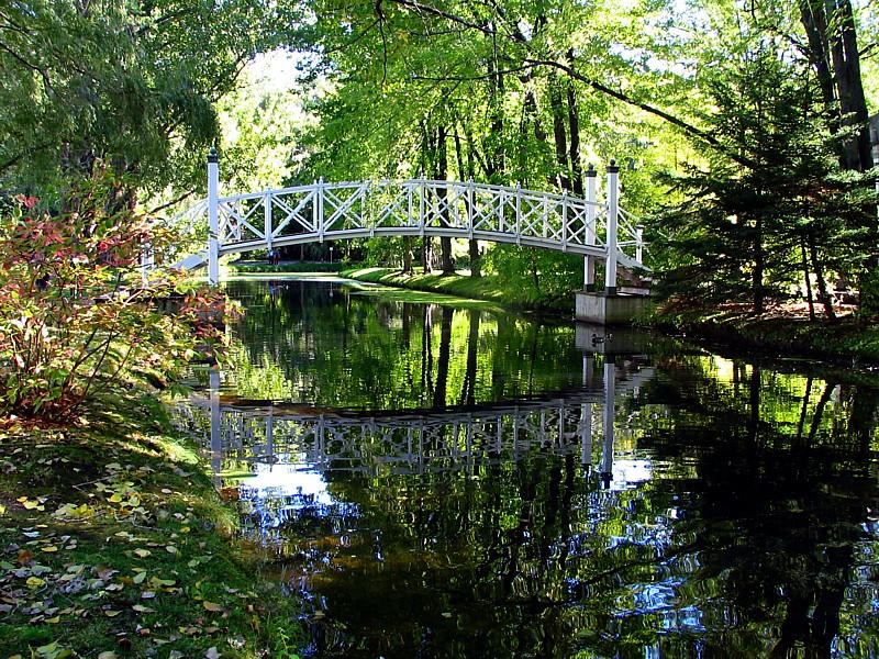 le petit pont sur la mare