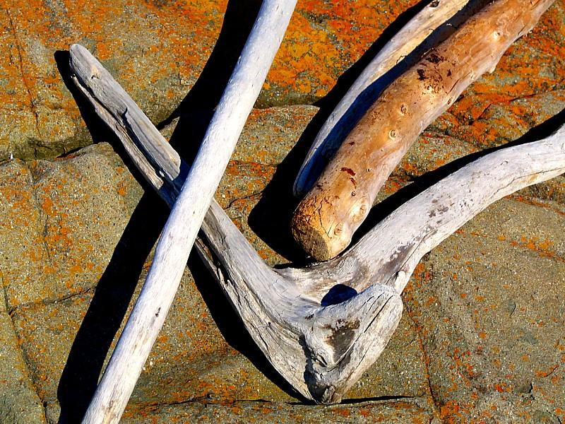 les bâtons